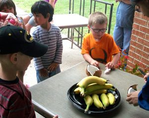 Web_Summer_Reading2016_Bananas