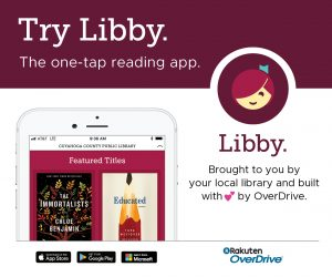 libby the ebook app